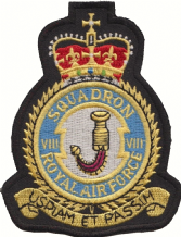 No. VIII (8) Squadron Royal Air Force RAF Crest MOD Embroidered Patch